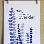Stop and Smell the Lavender..